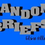 Random Briefs Logo
