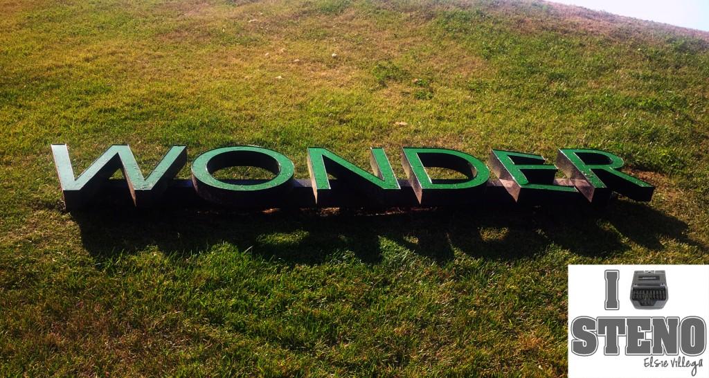 Wonder In Wonder Park