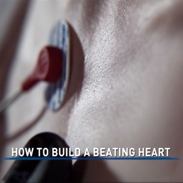 National Geographic How To Build A Beating Heart
